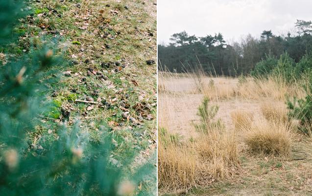 Hanke Arkenbout Photography