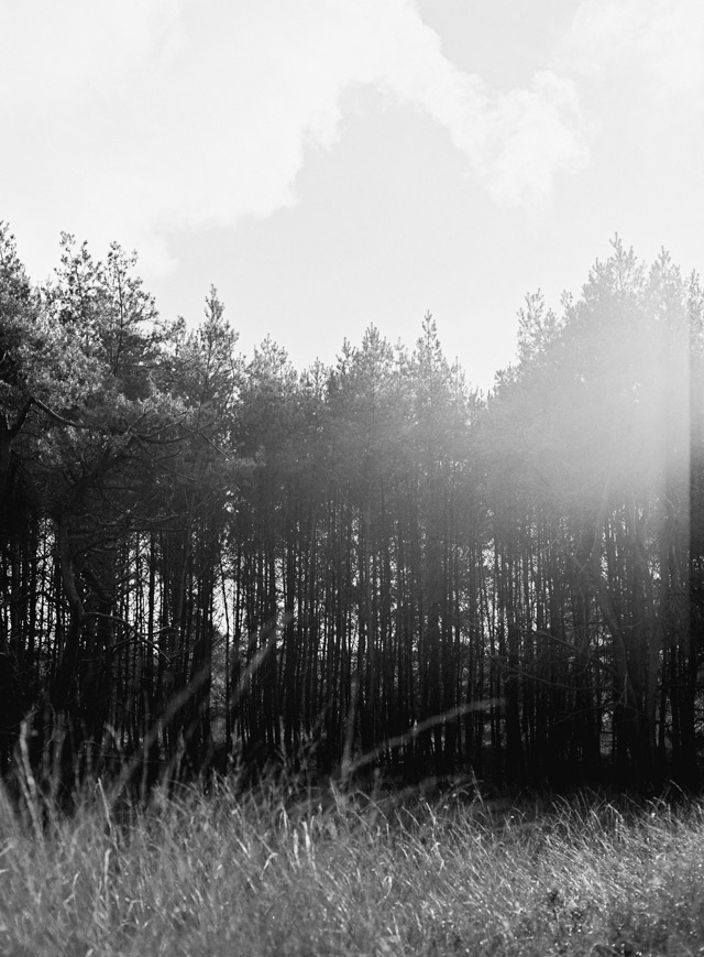 analoge fotografie hanke arkenbout