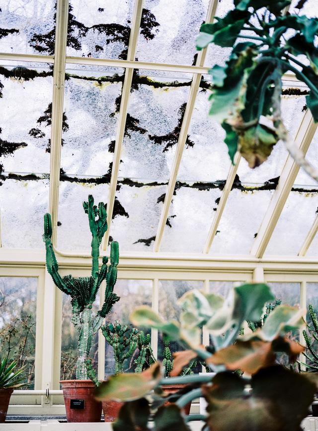 dublin botanical gardens ireland hanke arkenbout
