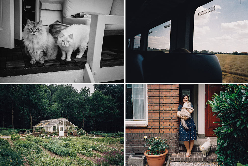 Blog list featured image